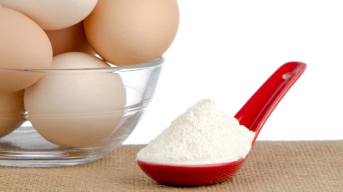 Brown Eggs On Brown And Red Ceramic Spoon With Egg White Protein Powder