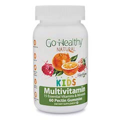 Go Healthy Natural Multivitamin Gummies for Kids